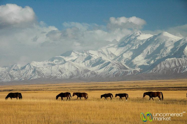 Offbeat Holiday Destinations, Mountains Kyrgyzstan