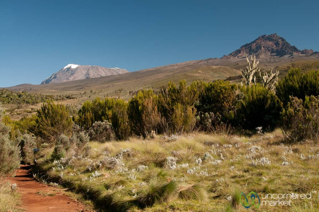 Climbing Kilimanjaro, Marangu Route Day 2